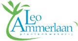 Leo Ammerlaan