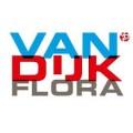 Van Dijk FLora